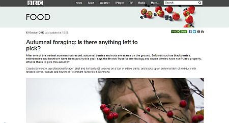 BBC website normal view